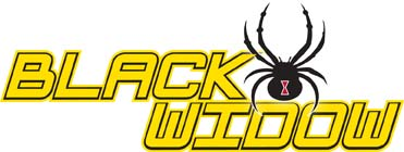 American Sportworks Black Widow Off Road Go Kart product logo